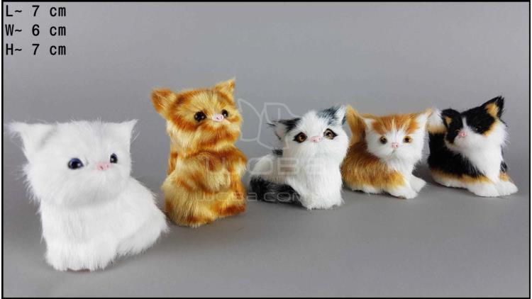 Kotki małe (5 szt. w opakowaniu)