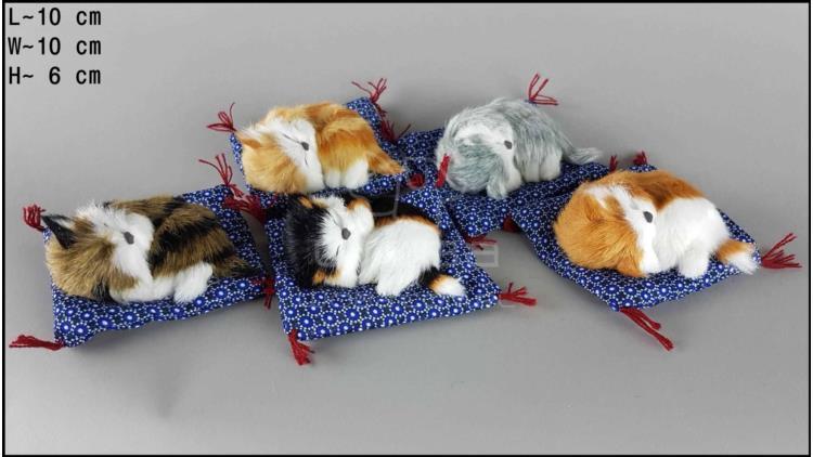 Kotki na poduszce niebieskiej (5 szt. w opakowaniu)