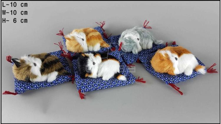 Kittens on a blue pillow (5 pcs in a box)