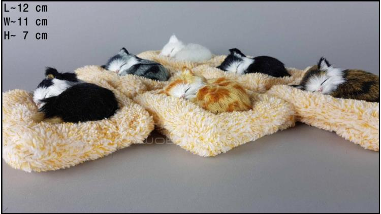 Kittens on a frotte pillow (6 pcs in a box)