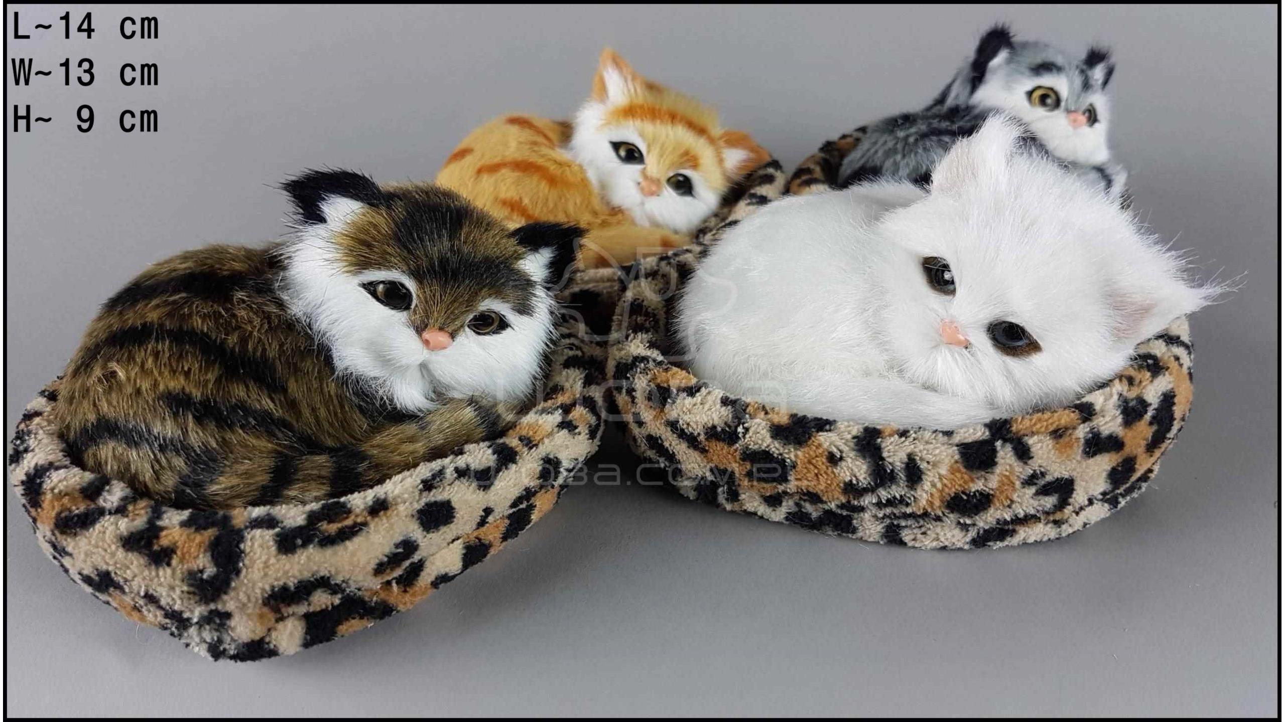 Kotki w kojcu w panterkę - Na rzep (4 szt. w opakowaniu)