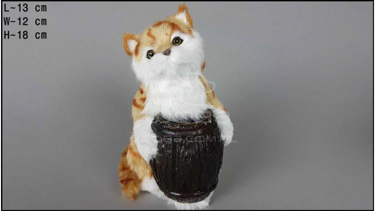 Cat with a barrel - Auburn
