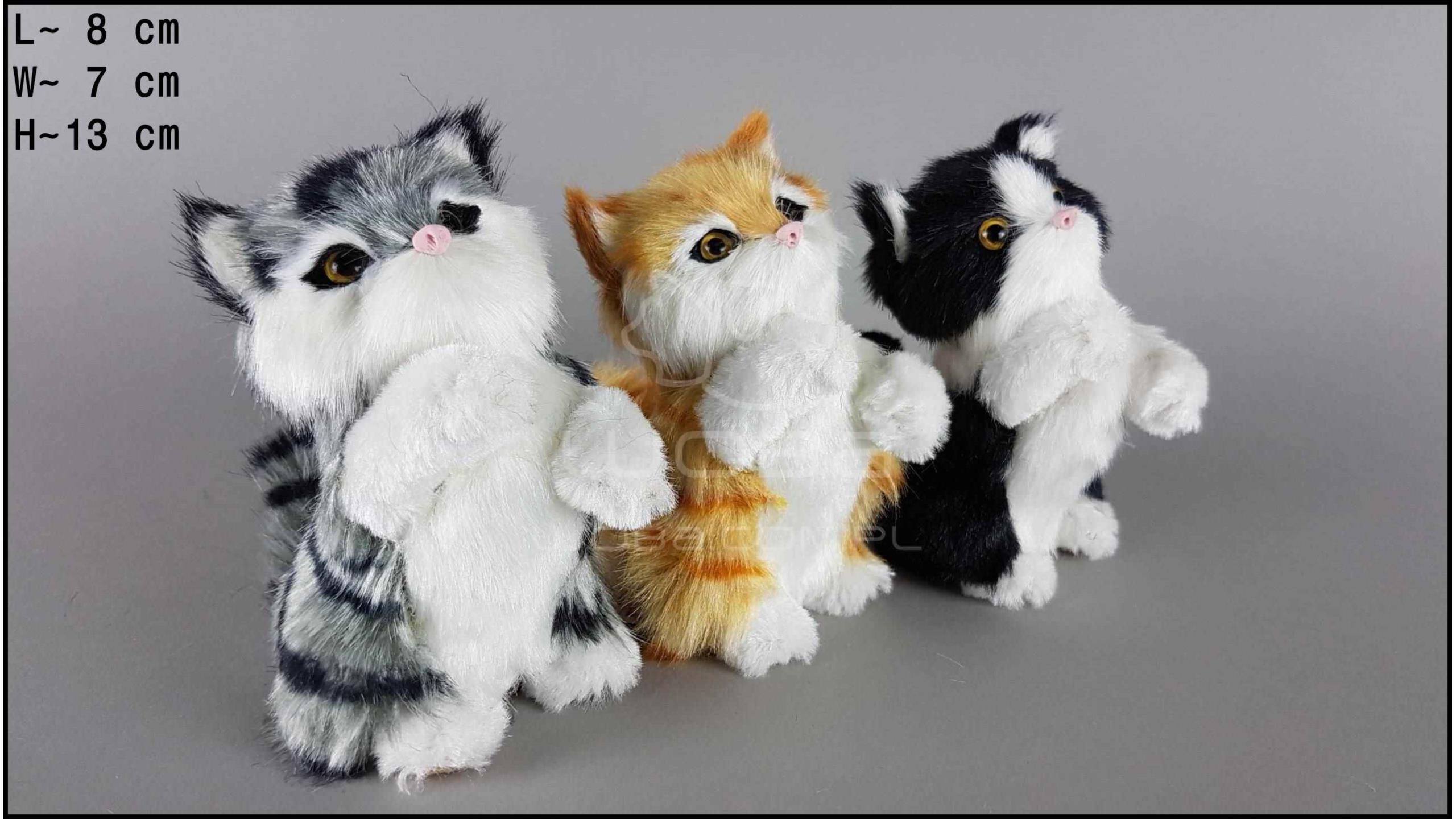 Kotki proszące (3 szt. w opakowaniu)