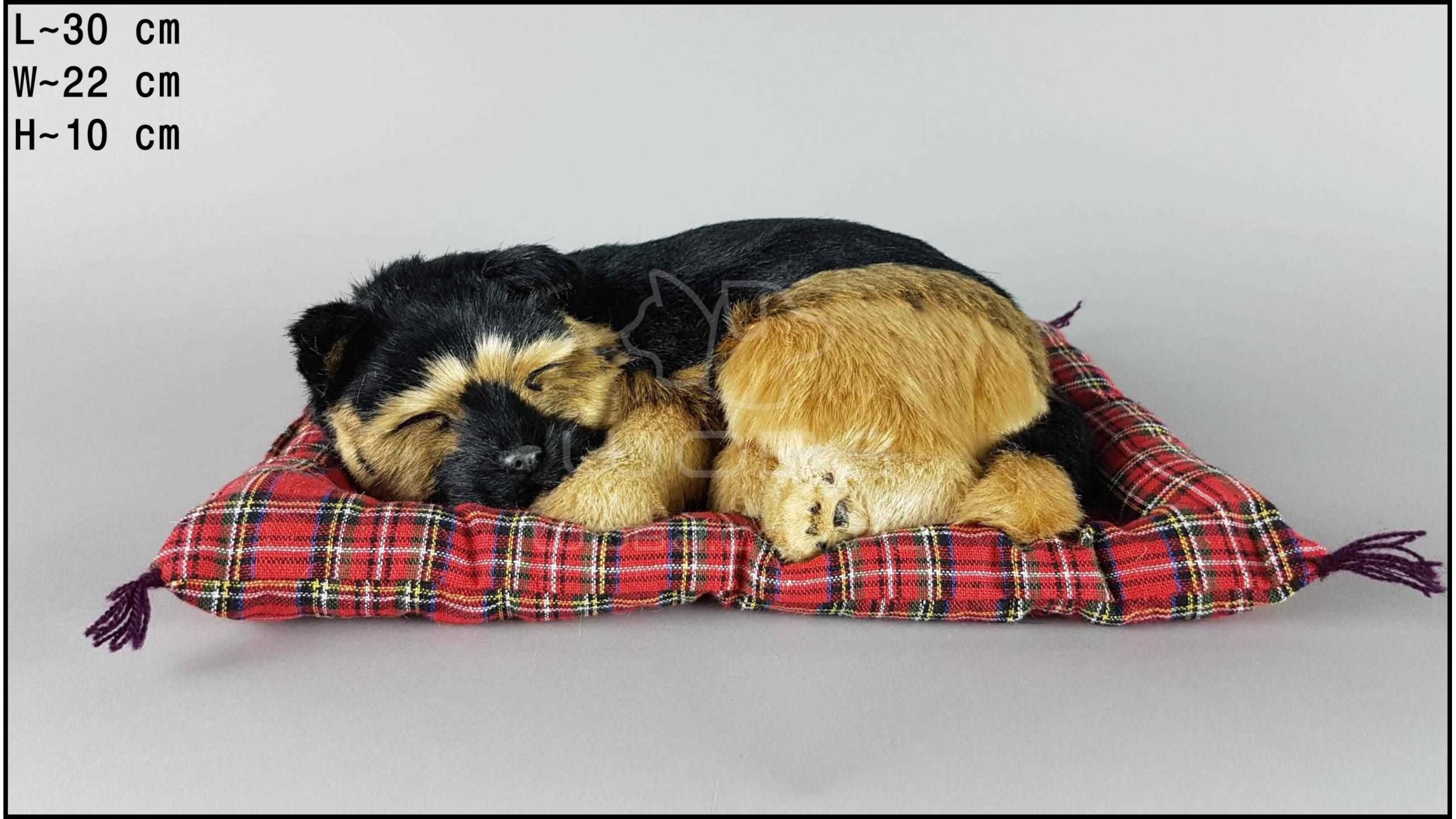 Pies Owczarek niemiecki na poduszce Rozmiar L