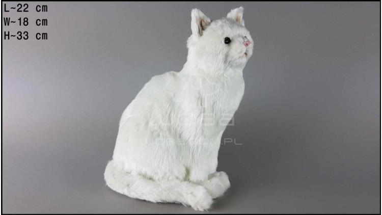 Kot b.duży siedzący Biały
