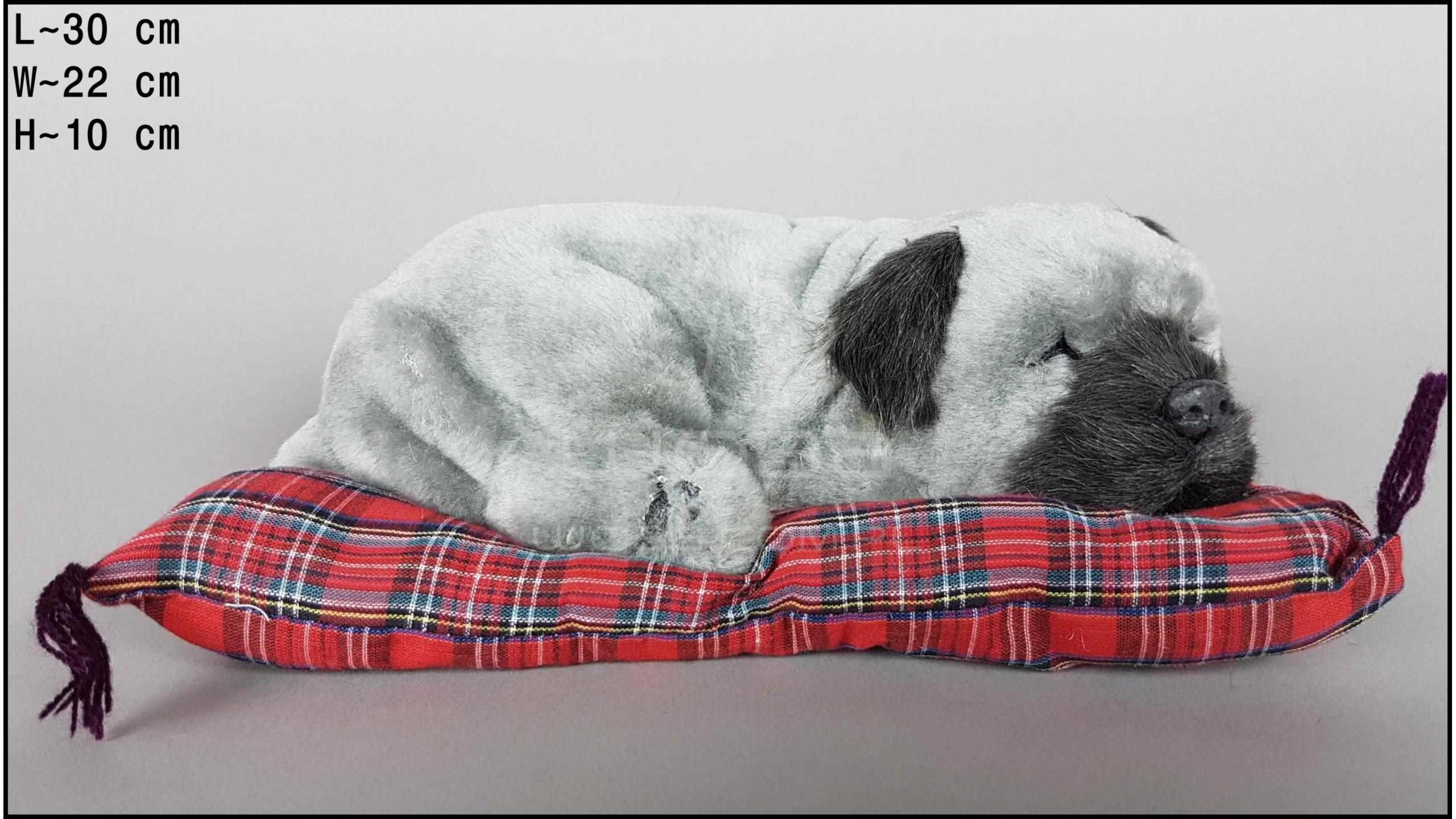 Pies Shar Pei na poduszce Rozmiar L