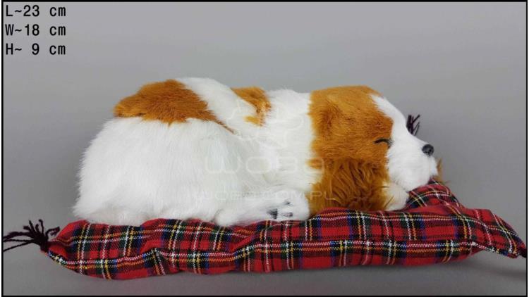 Pies Charles Spaniel na poduszce Rozmiar M - Żółty