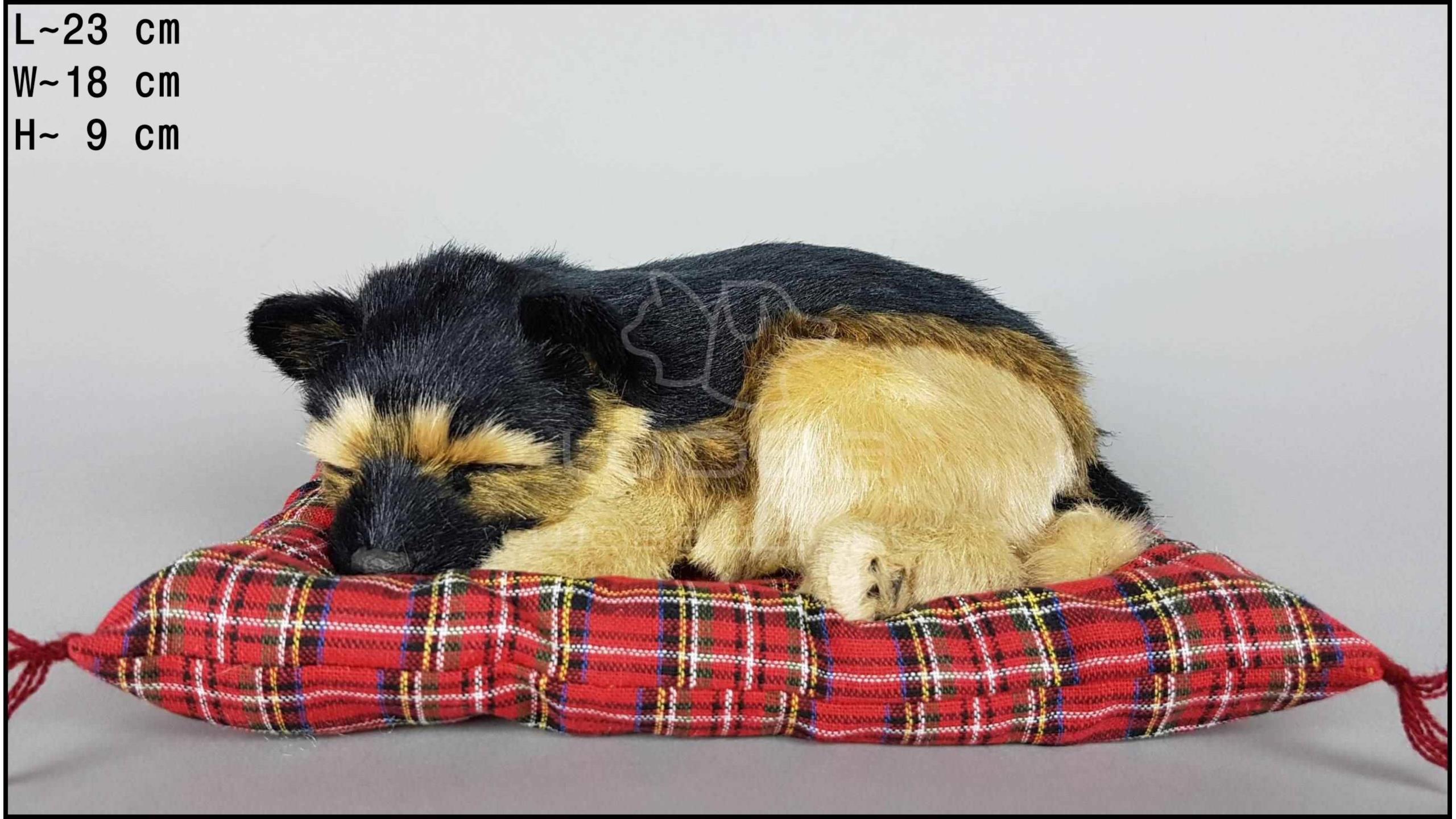 Pies Owczarek niemiecki na poduszce Rozmiar M
