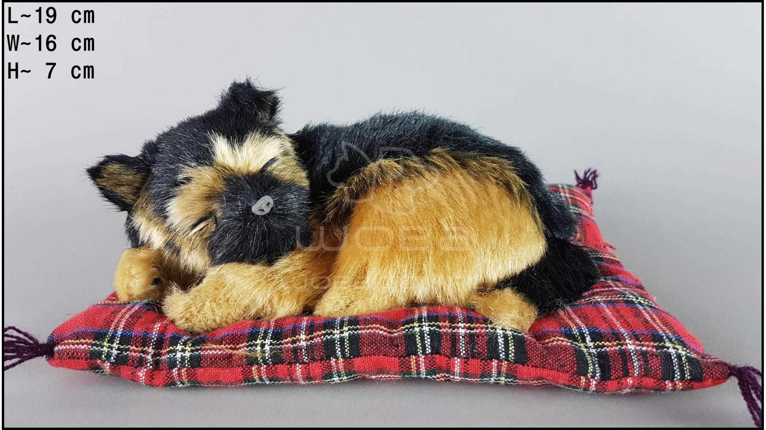 Pies Owczarek niemiecki na poduszce Rozmiar S